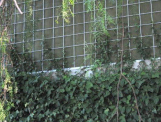 Pantalla-Acustica-Vegetal-Ejemplo